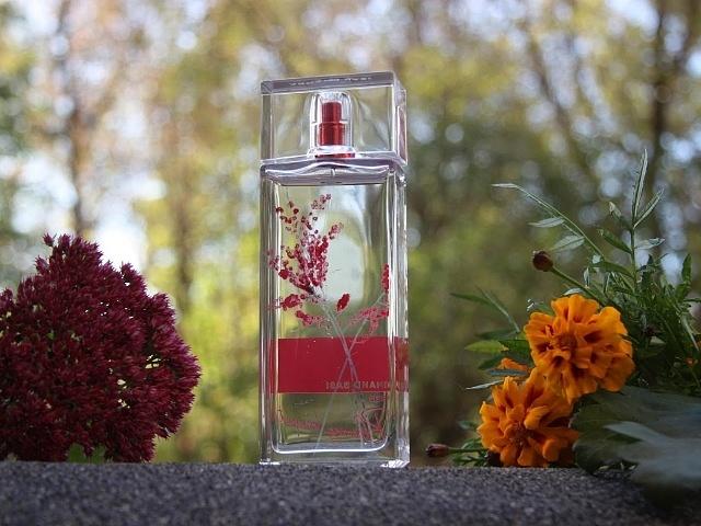 описание аромата арманд баси ин ред